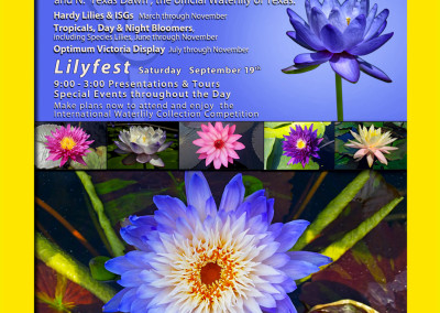 LilyFest 2015 News & Updates