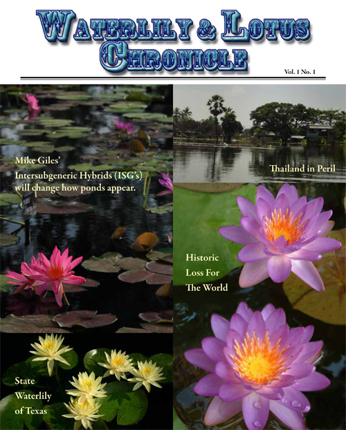 Waterlily & Lotus Chronicle